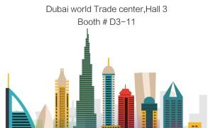 Dubai Gitex Fair 2015